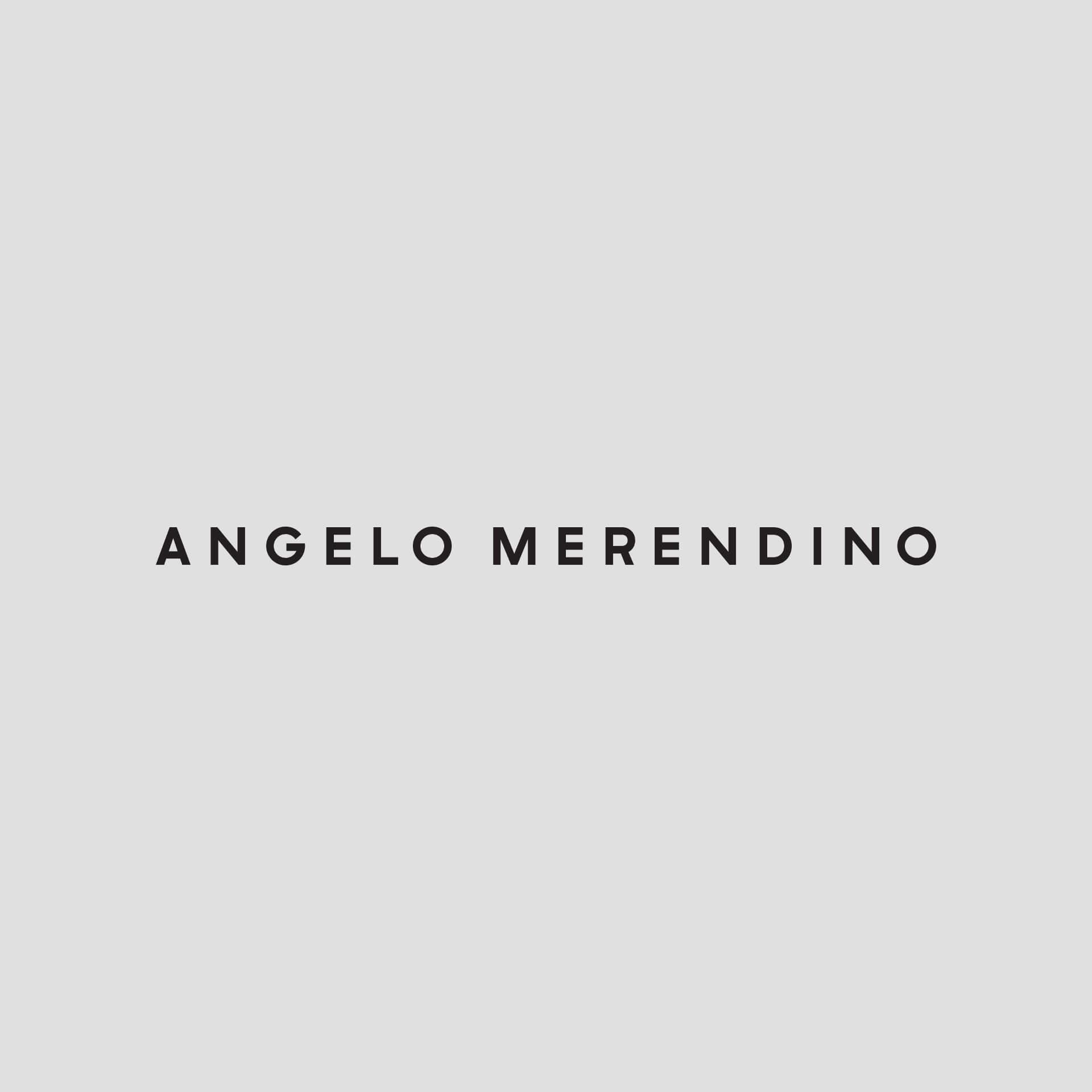 Protected: Angelo Merendino